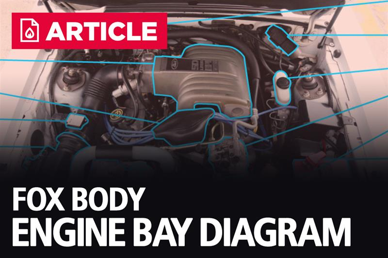 Fox Body Engine Bay Diagram (1986-1993) - LMR.com